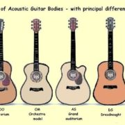 How To Buy An Acoustic Guitar Skyline Music